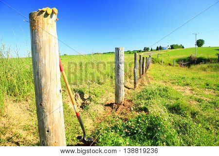 fencing barb wire farming pasture cattle summer fence posts