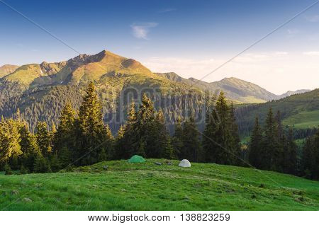 Camping in the mountains. Two tourist tents on a green hill. Morning landscape with sunshine and clear blue sky. Fir forest on a hill. Karpaty, Ukraine, Europe