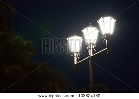 Nights lights of three lamps in the park