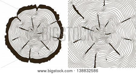 Tree growth rings, saw trunk cuts . Wooden tree rings or incision trunk of tree. Vector illustration