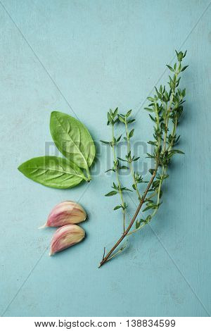 Fresh thyme sprig with basil leaves and garlic