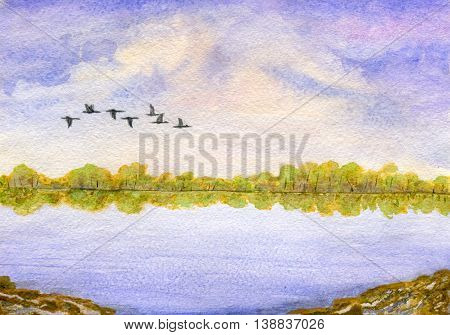 Landscape: cloudy sky, lake, forest on the horizon and a flock of migratory birds. Hand painted watercolor illustration and paper texture