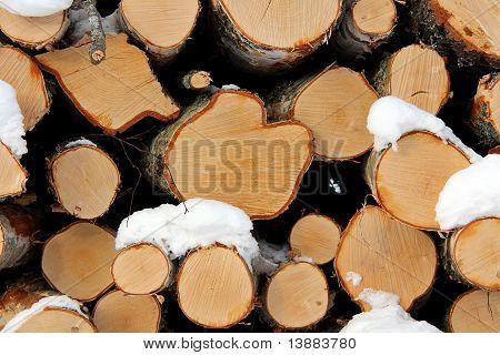 Birch Wood Logs Background