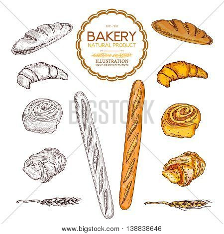 Baking collection baguettes bread and rolls collection hand drawn vector