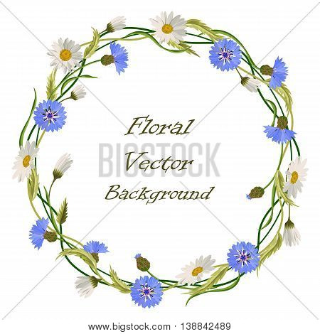 Wreath frame with blue cornflowers, daisies and green leaves isolated on a white background. Vector illustration.