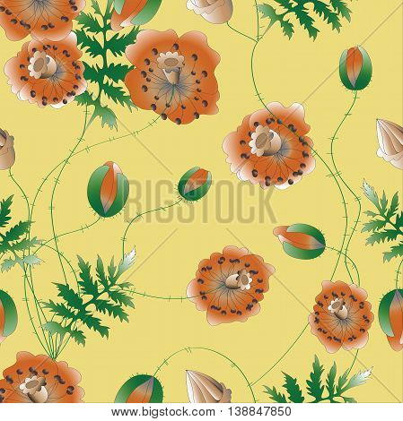 Pattern Poppies flowers.Vector illustration.Poppies on a yellow background.