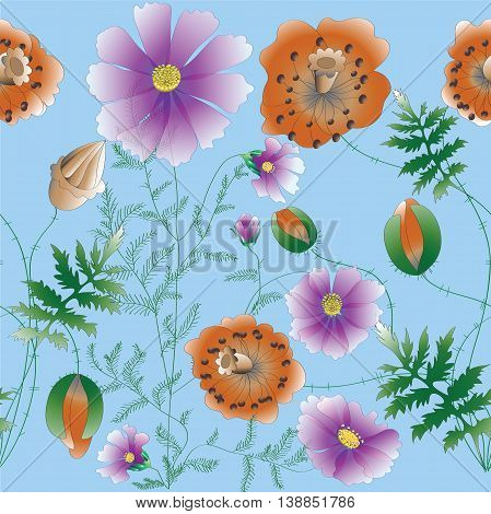 Poppy and kosmeya flowers.Vector pattern.Poppies and kosmeya on a on a blue background.