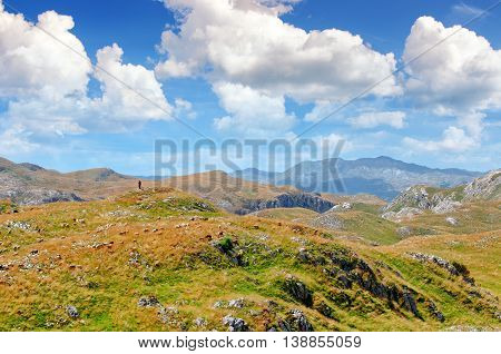 Montenegro national park Durmitor mountains and clouds panorama. Shepherd and flock of sheep. Sunlight lanscape. Nature travel background