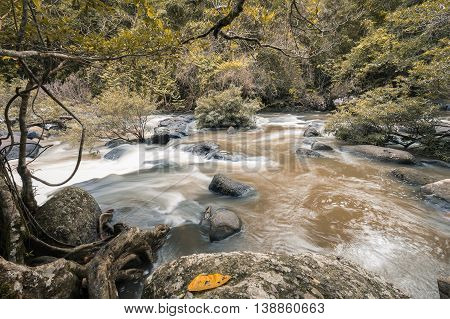 Small waterfall of rock river with flowing brown mud water which surround by yellow tree