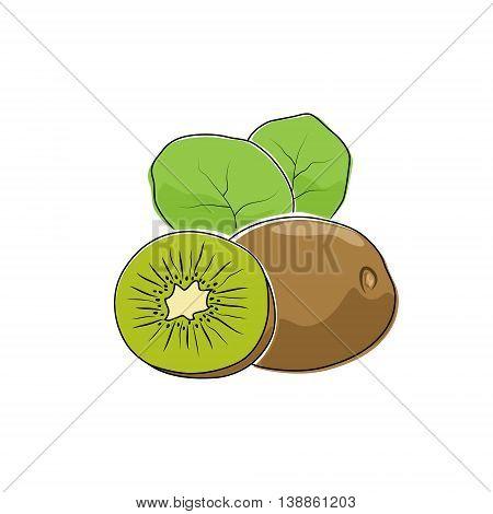 Kiwifruit Isolated on White Background, Tropical Fruit Kiwi , Vector Illustration