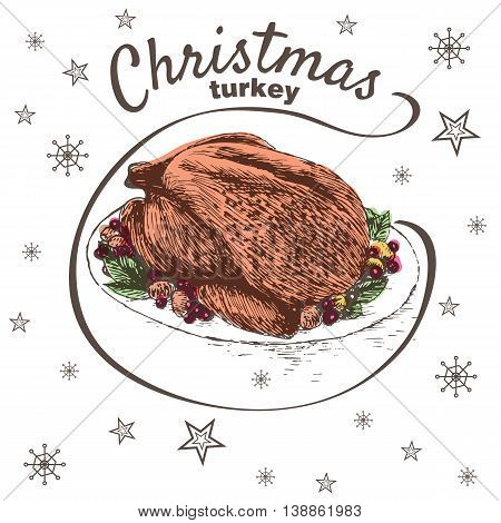 Vector colorful illustration of Christmas turkey with herbs and berries. Christmas turkey on white background with snowflakes