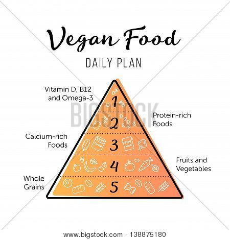 Food pyramid healthy vegan eating infographic. Recommendations of a healthy lifestyle. Thing line icons of products. Vector poster.