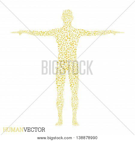 Human. Structure molecule of man. Vector illustration. Medicine, science and technology. Scientific Vector for your design.