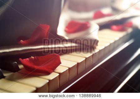 Petals of rose on piano keys