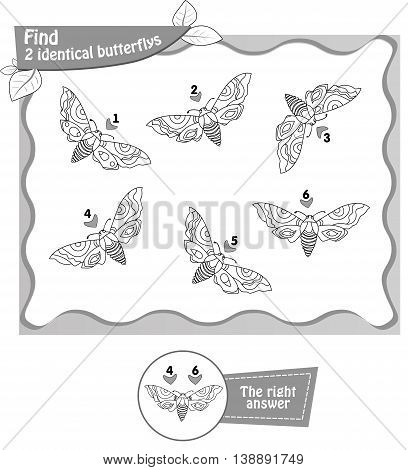 visual game coloring book for children and adults. Task to find 2 identical butterflys. black and white vector illustration