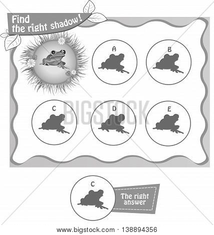 visual game for children and adults. Task the find right shadow frog. black and white vector illustration