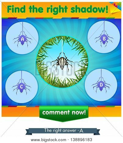 visual game for children and adults. Task the find right shadow spider