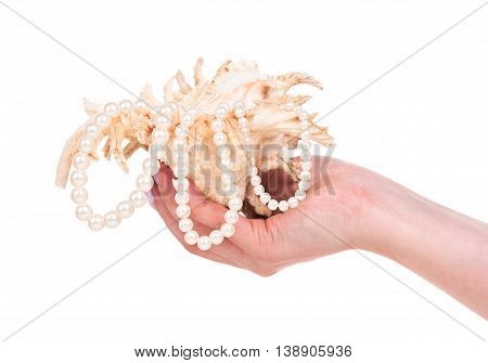 Young female hand with cockleshell and pearls isolated over white background