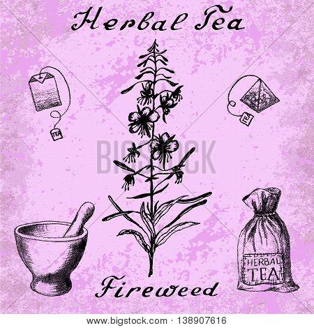 Willow herb, Chamerion, fireweed, rosebay hand drawn sketch botanical illustration. Vector drawing. Herbal tea elements - tea bag, bag, mortar and pestle. Lettering. Grunge background