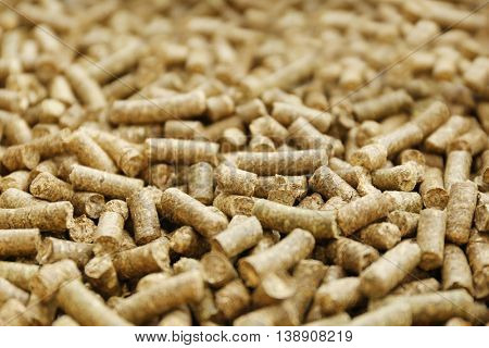 Solid wooden pellets, closeup