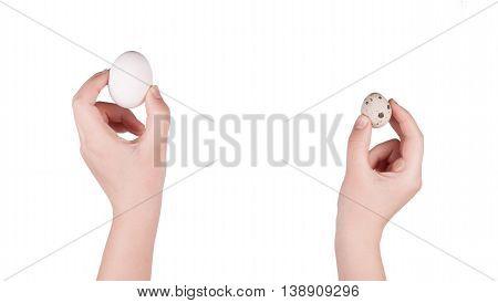 Hand Holding Goose Egg And Quail Egg