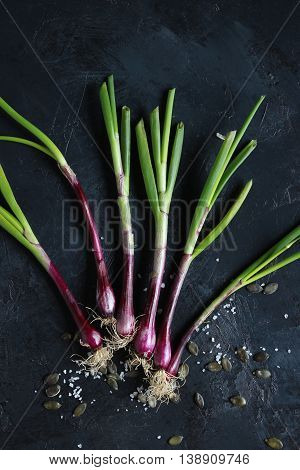 purple spring onions on dark table background