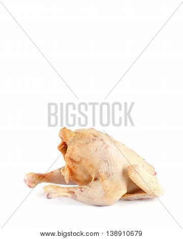 Chicken Carcass Isolated