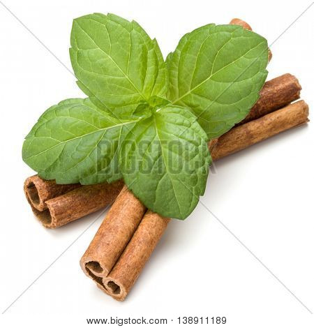 Cinnamon sticks and fresh peppermint herb leaves isolated on white background