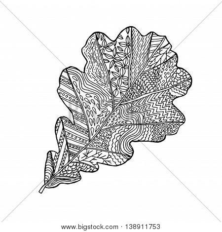 Oak Leaf Hand Drawn Vector Design Zentangle Print For Coloring Book