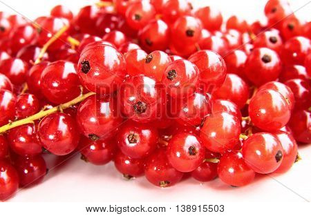 Closeup Of A Bunch Of Delicate And Fresh Redcurrants