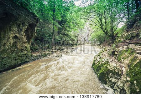 Restless River Flowing Through The Forest
