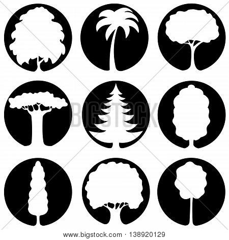 Set of icons of different types of white silhouettes of trees on a black background
