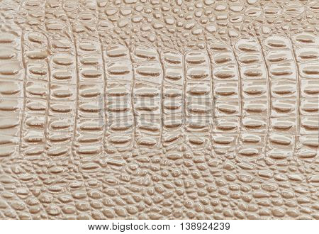Beige leather texture background closeup. The skin of a crocodile or a snake Macro