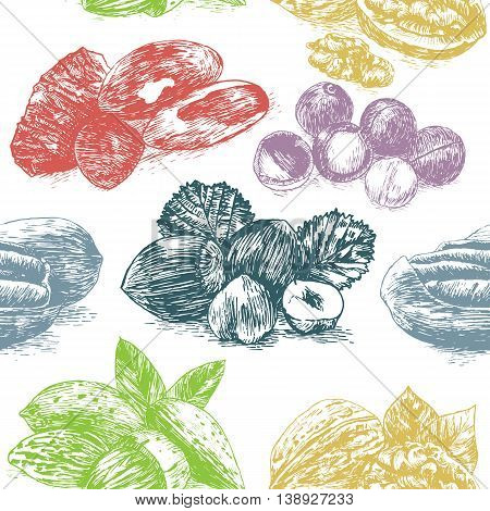 Vector illustration colorful seamless pattern with nuts. Different sort of nuts on white background