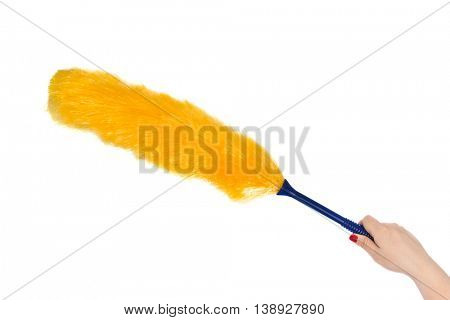 Whisk dust isolated on white background