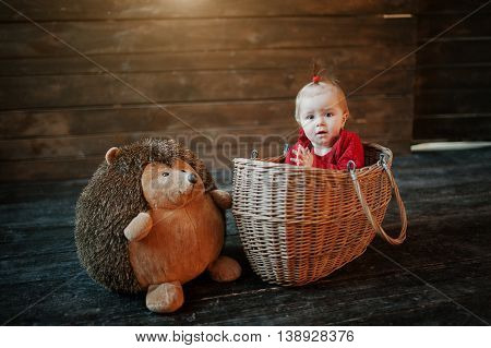 Funny Girl Baby In Red Dress Sit On The Basket With Hedgehog Toy