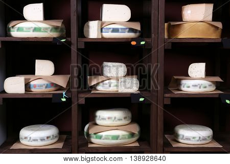 Different kinds of cheese on shelves in cellar