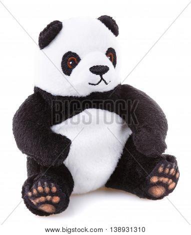 Children toy, Soft teddy panda bear  isolated on white background