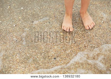 Feet child on a sandy beach with seashells. Legs of children stand on the beach