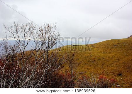a small cabin in the mountains, gentle rolling hills, one of which is a low, lone house in the foreground a Bush without leaves, heavy grey sky