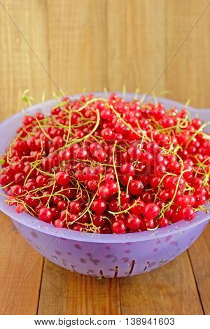red currant on the plate on the brown wooden texture