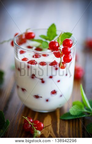 sweet homemade yogurt with red currants on the table