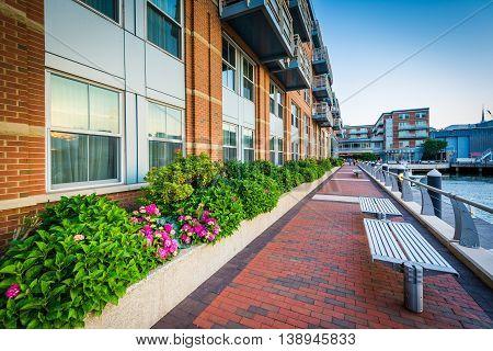 Benches Along The Boston Harborwalk At Battery Wharf, In The North End, Boston, Massachusetts.