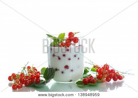 sweet homemade yogurt with red currants on a white background