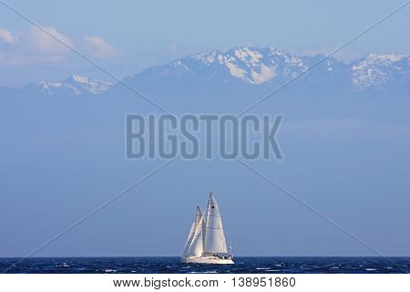 Yachts sailing off Vancouver Island in Canada