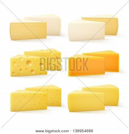 Vector Set of Triangular Pieces of Various Kind of Cheese Swiss Cheddar Bri Parmesan Camembert Close up Isolated on White Background
