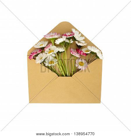 flowers in the envelope isolated on a white background