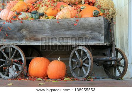 Fall scene, with old, weathered wagon filled with pumpkins and squash