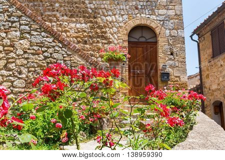 Red Roses In Front Of An Old House In San Gimignano