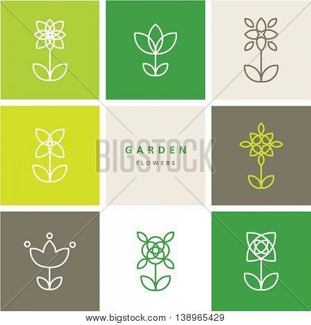 Flowers - set of flowers - decorative design  line element